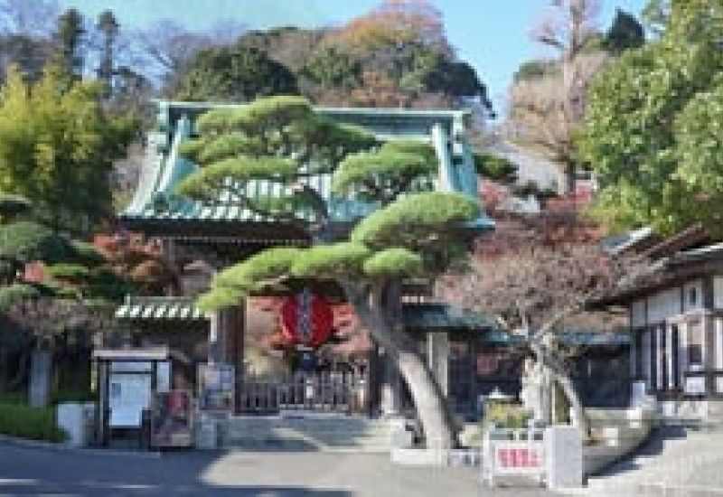 The Origins of Kamakura´s Hasedera Temple Japan December 2014